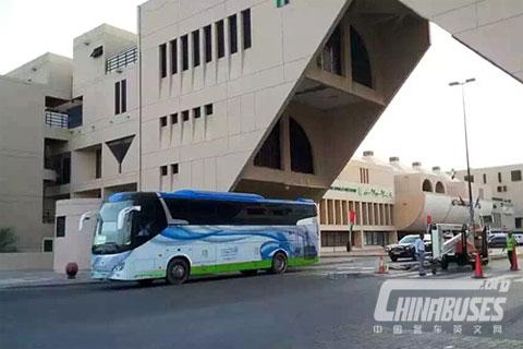Wuzhoulong Bus FDG6128CNG