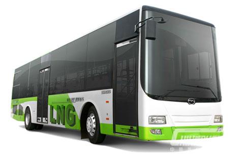 Wuzhoulong Bus FDG6111HEVG