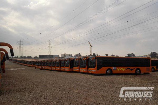 "Ankai HK6118G: Recommend ""Algeria Star"" of China Buses"
