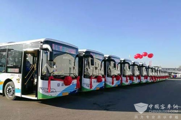 The First Batch of 135 Units King Long New Energy Buses Went Into Operation in Shenyang