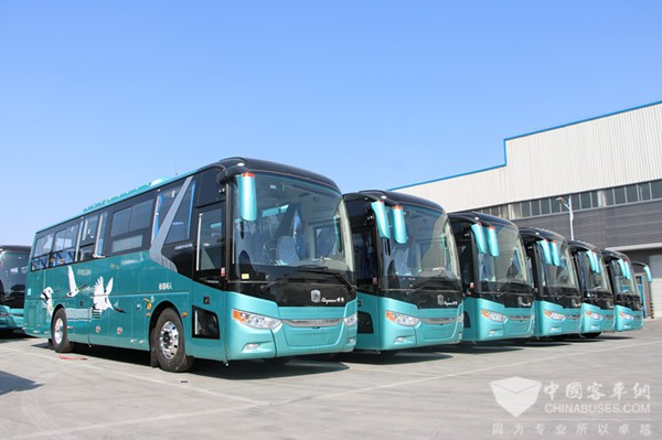 Zhongtong New Energy Buses Start Operation in Qingdao and Yancheng