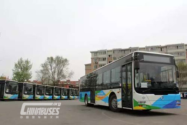 Golden Dragon Bus Fleet Plays an Essential Role in Shenyang Public Transport