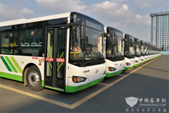 Over 600 Units Higer Buses Start Operation in Weihai