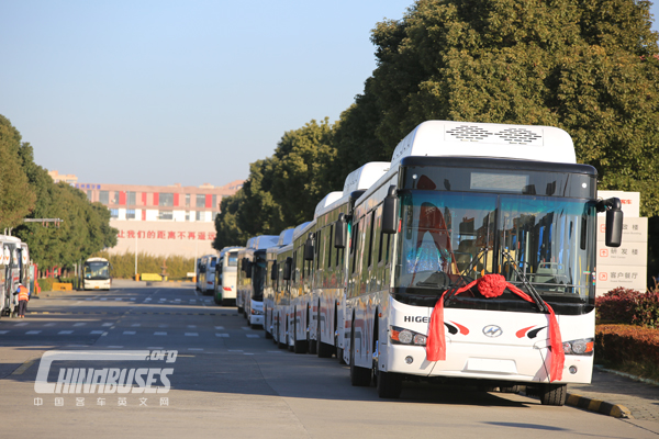 35 Units Higer Buses Exported to Trinidad and Tobago