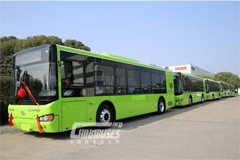 HIGER Electric City Bus Exported to South Korea in Batches
