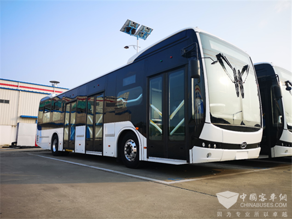 BYD Secures an Order of 379 Units Electric Buses from Columbia
