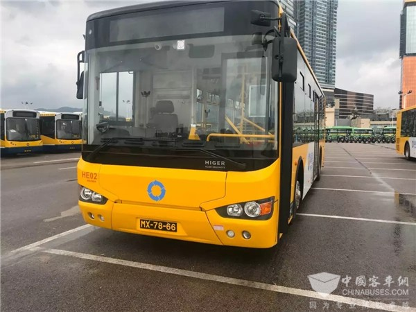Over 700 Units Higer Buses Work Smoothly in Macau