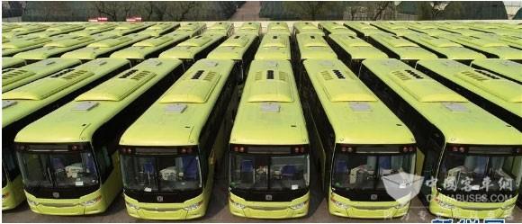 320 Units Zhongtong Luxury Coaches Embark on Their Journey to Saudi Arabia