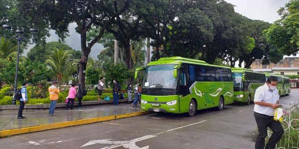 Peruvian Customer Speaks Highly of Golden Dragon Buses
