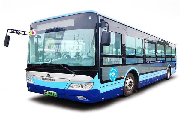 LEDA Bus LSK6105GEV1 City Bus