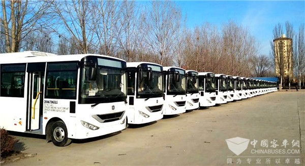 200 Units Zhongtong Lithe Buses to Arrive in Philippines