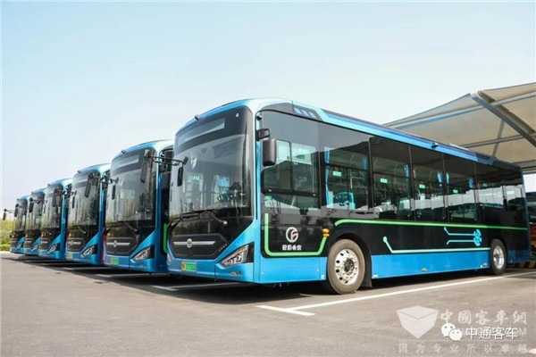 1,366 Units Zhongtong Buses Provide Transportation Services to 58 Million Passengers Each Year in Heze