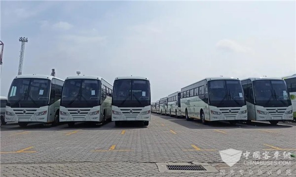 50 Units Golden Dragon Travel Buses with More Customized Features to Arrive in Zimbabwe for Operation