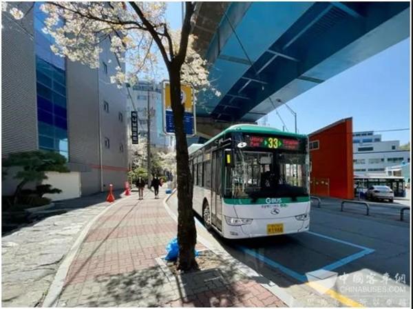 King Long Electric Buses Gain Growing Popularity in South Korea