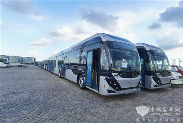 227 Units Golden Dragon Buses Arrive in Israel for Operation