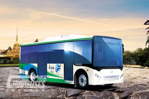 Wuzhoulong Bus FDG6801