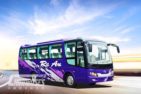 Wuzhoulong Bus FDG6860C3