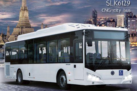 Sunlong Bus SLK6129