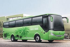 Ankai Bus HFF6121K09D1E51 diesel engine bus