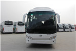 Skywell Bus NJL6118BEV electric bus