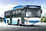 Skywell Bus NJL6100BEV43 electric city bus