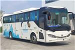 CRRC Bus TEG6110BEV11 Electric Bus