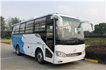 Higer Bus KLQ6829ZGEVN2 Electric Bus